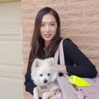 Kangrim & Alexander's dog boarding