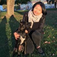 """Jingwen """"Wendy""""'s dog boarding"""
