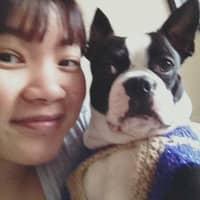 Trang & Thi Kim Yen's dog boarding