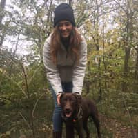 Teonna's dog day care