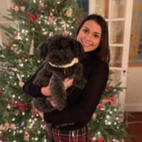 Natalie's dog day care