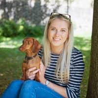 Gemma's dog day care