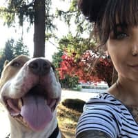 Micayla's dog day care