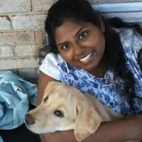 Preethi's dog day care