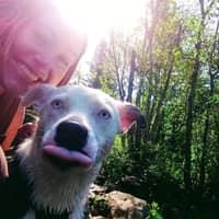 dog walker Devra