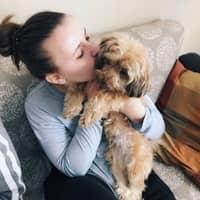 Nataliya's dog day care
