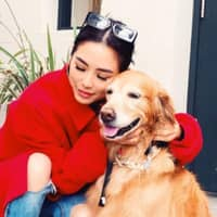 Chengyi 'Dodonna''s dog boarding