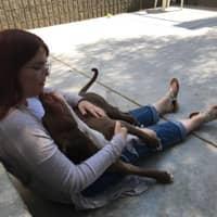 pet sitter Maggie
