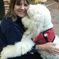 Kathy's dog boarding
