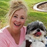 Diana's dog day care
