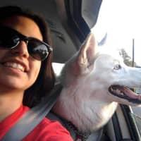 Jaclyn V.'s profile image