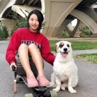 Hye In's dog boarding