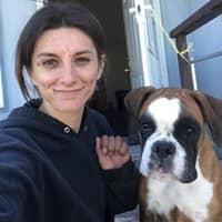 Celeste & John's dog boarding