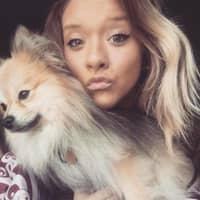 dog walker Shelby