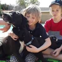 Ruthemma's dog day care