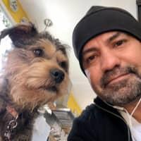 Fabio's dog boarding