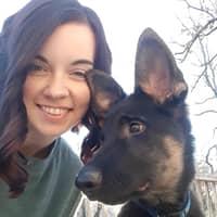 Rachel & Jake's dog boarding