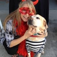 Ambra's dog day care