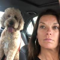 dog walker Suzy