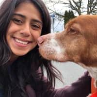 dog walker Kaytlyn