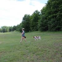 """dog walker Shelby """"Joelle"""""""