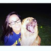Berenice's dog day care