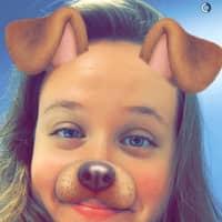Kate's dog boarding