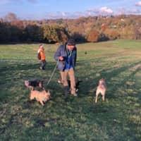 dog walker Mark
