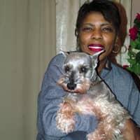 Thomasine's dog day care