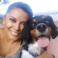 Rossy & Austin's dog day care