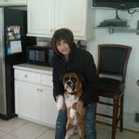 Nikki & Ricardo's dog boarding