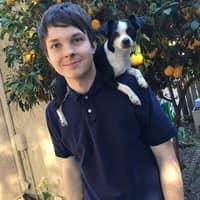 Nicholas's dog boarding