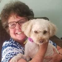 Nancy B.'s profile image