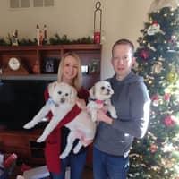Katy & Brian's dog boarding