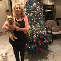 Dona's dog day care