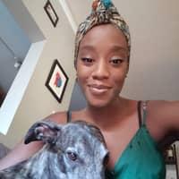 Yami's dog day care