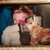 Nancy's dog day care