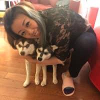 Christina's dog day care