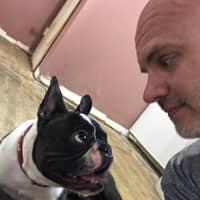 Karl's dog day care