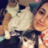 Ryann's dog day care