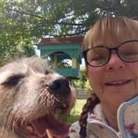 Joanne T.'s profile image