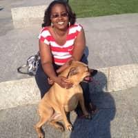 Rochelle's dog boarding