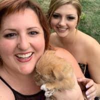 Heather & Leah's dog boarding