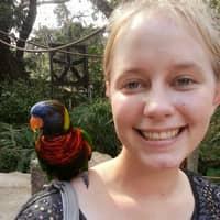 Madeline B.'s profile image