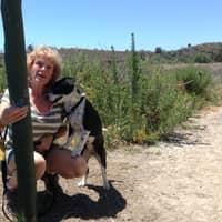 Joanne's dog boarding