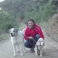 Alojamiento de perros de Carlos