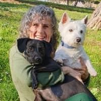 Alojamiento de perros de SALUD Y ANTONIO