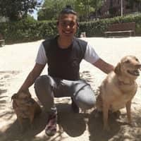 Alojamiento de perros de Santiago