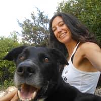 Alojamiento de perros de Pau