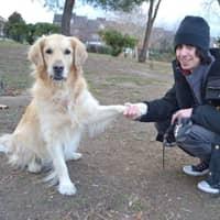 Alberto's dog boarding